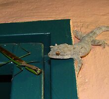 Mr Gecko and Miss Mantis discussing dinner by Dorothy Venter