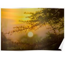 sunset HDR Poster
