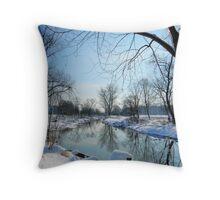 true winter has arrived Throw Pillow