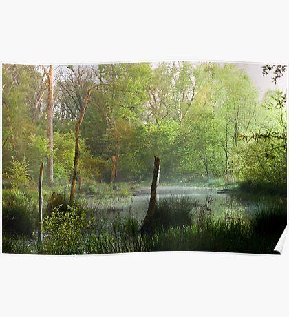 Misty Marsh Poster