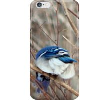 Take a picture of this! iPhone Case/Skin