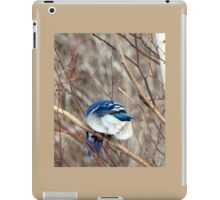 Take a picture of this! iPad Case/Skin