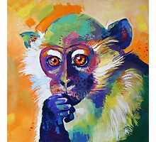 Thinking Monkey Photographic Print