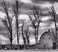 Winter Pruning by J. D. Adsit
