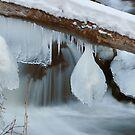 Winter Creek by Ken Fortie