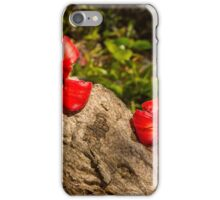 A Garden Story iPhone Case/Skin