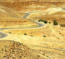 Desert road, Tunisia by guyp