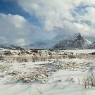 The Land of snow by Dominika Aniola