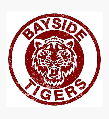Bayside Tigers Photographic Print