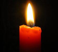 In Loving Memory by nikki harrison
