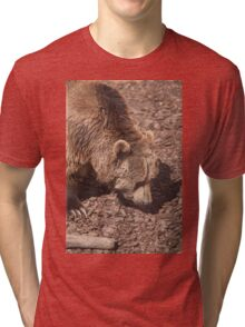 bear in the zoo Tri-blend T-Shirt