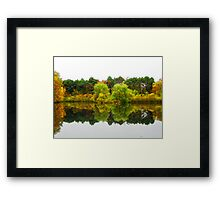 Reflections (high Park)!... Framed Print
