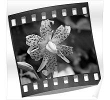 Film Strip 35 mm Poster