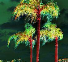Palms trees  by LudaNayvelt