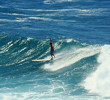 Surfing at Fairy Bower, Manly, NSW, Australia  by Of Land & Ocean - Samantha Goode