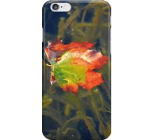 Floating Leaf | Center Moriches, New York  iPhone Case/Skin