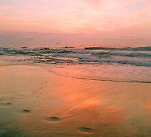 morning's precious light #2 by Juilee  Pryor