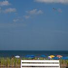 At the beach by LittleBird