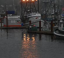 foggy marina by Gale Distler