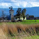 Willamette Valley Old Farm Windmill  by Chuck Gardner