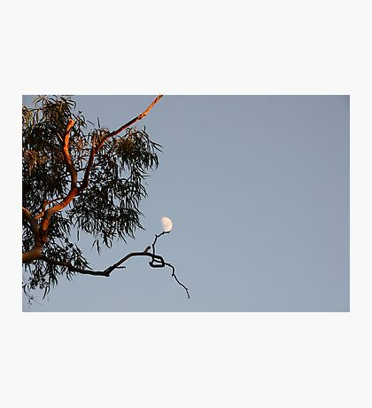Supporting the Moon Photographic Print