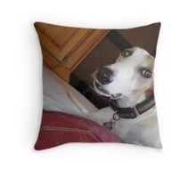 Bert Bert Throw Pillow