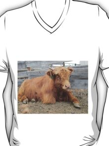 Moose  15 March 2015 T-Shirt
