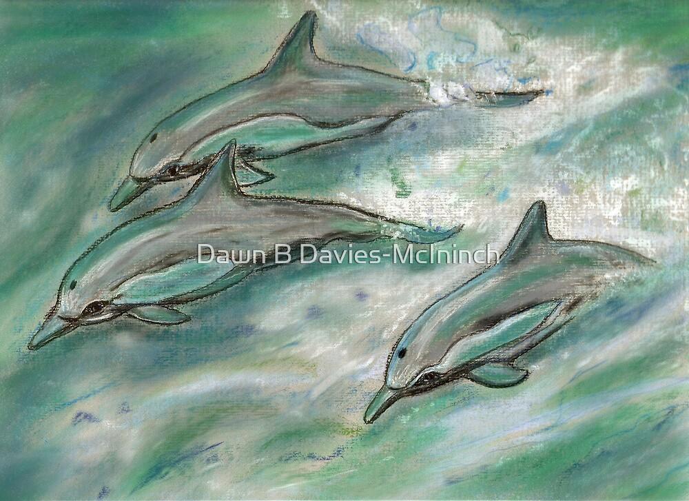 Dolphin trio  by Dawn B Davies-McIninch