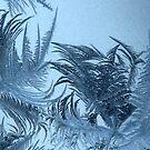 window crystals by loralea