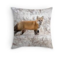 Red Fox Listening Throw Pillow
