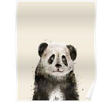little panda Poster