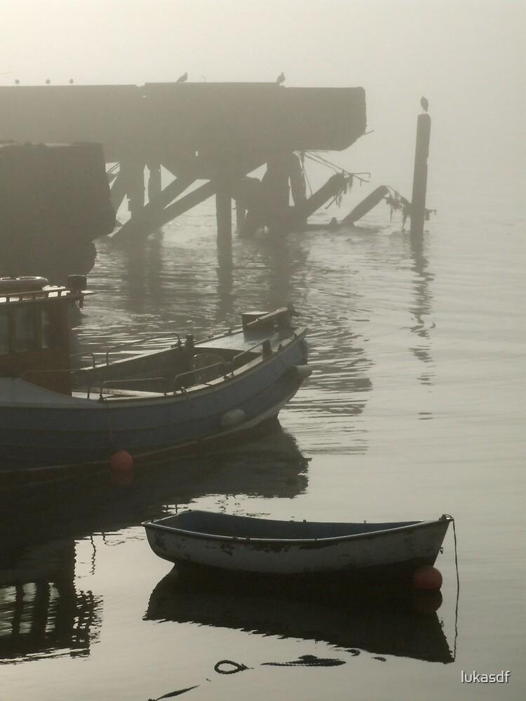 foggy day (4) by lukasdf