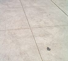 Lined Concrete by monica98
