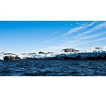 Antarctiscape Photographic Print