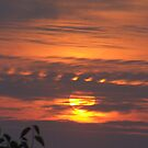 Sunrise on a smokey morning. by Kaylene Passmore