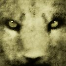 Panthera Leo I by Leny L.