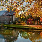 Cook's Mill by Steve  Taylor