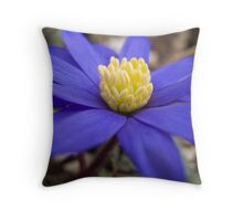 Blanda Throw Pillow