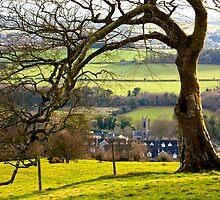 The Hill of Slane by Janine Branigan