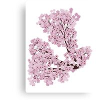 Blooming Sakura Branch 2 Canvas Print