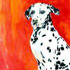 Dalmatian by Yvonne Carter