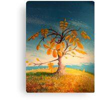 Little walnut tree Canvas Print