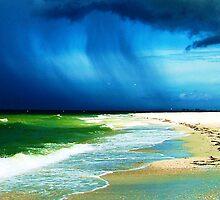 florida storm by oneti134