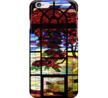 A Tale of Windows and Magical Landscapes iPhone Case/Skin