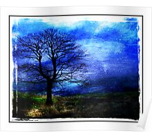 Moorland Winter Poster