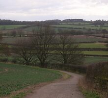 Bosworth Battlefield by Lucy Wilson