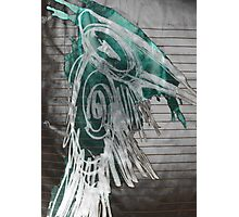 green crow Photographic Print
