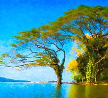 Dream Tree - Lake Nicaragua by Mark Tisdale