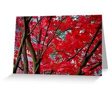crimson fall Greeting Card