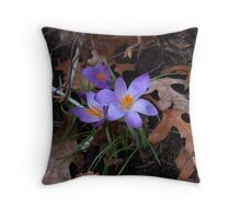 First to Show Throw Pillow